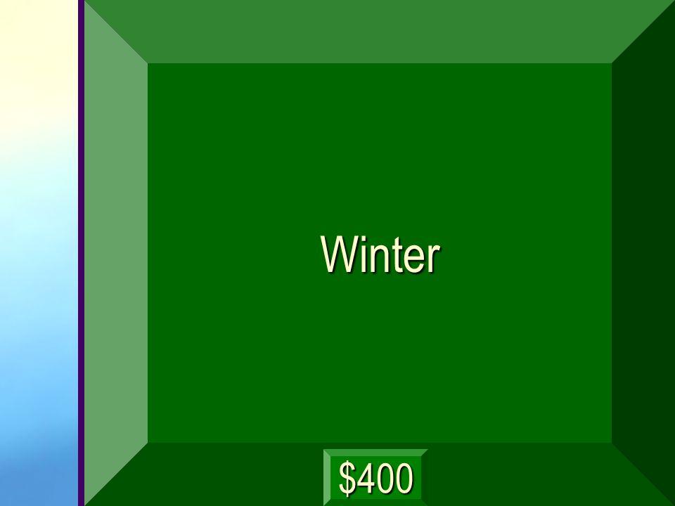 Winter $400