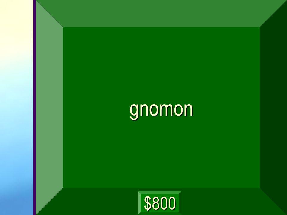 gnomon $800