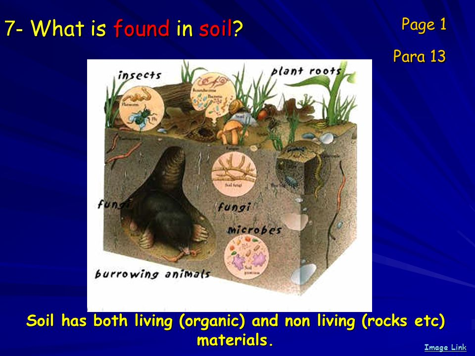 Soil has both living (organic) and non living (rocks etc) materials.