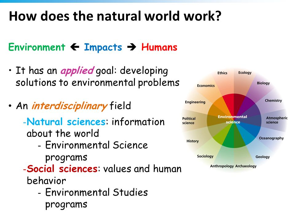 How does the natural world work