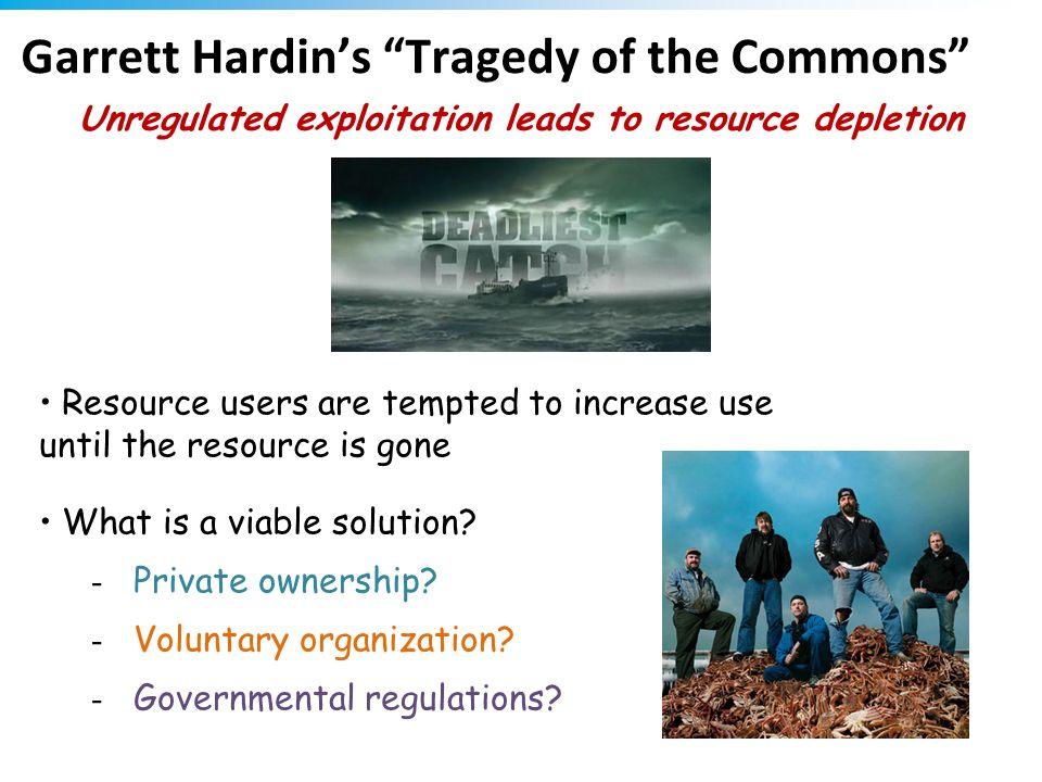 Garrett Hardin's Tragedy of the Commons