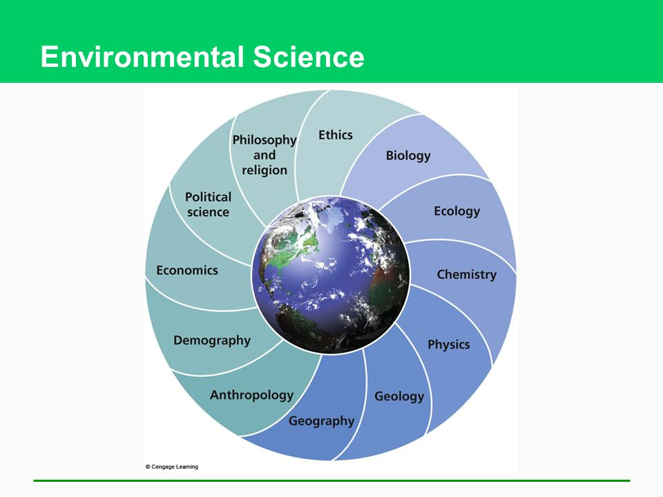 how do you define environmental science essay In this essay, normal science means research firmly based  normal science - if you or your organization are succeeding  or do whatever it takes to define it in.