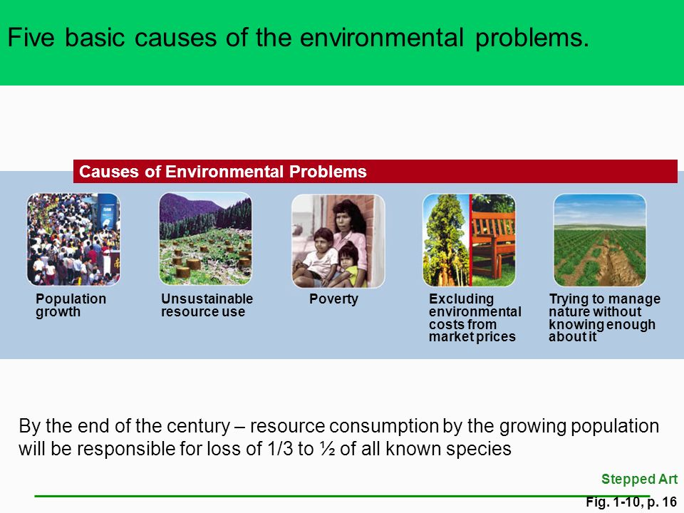 Five basic causes of the environmental problems.