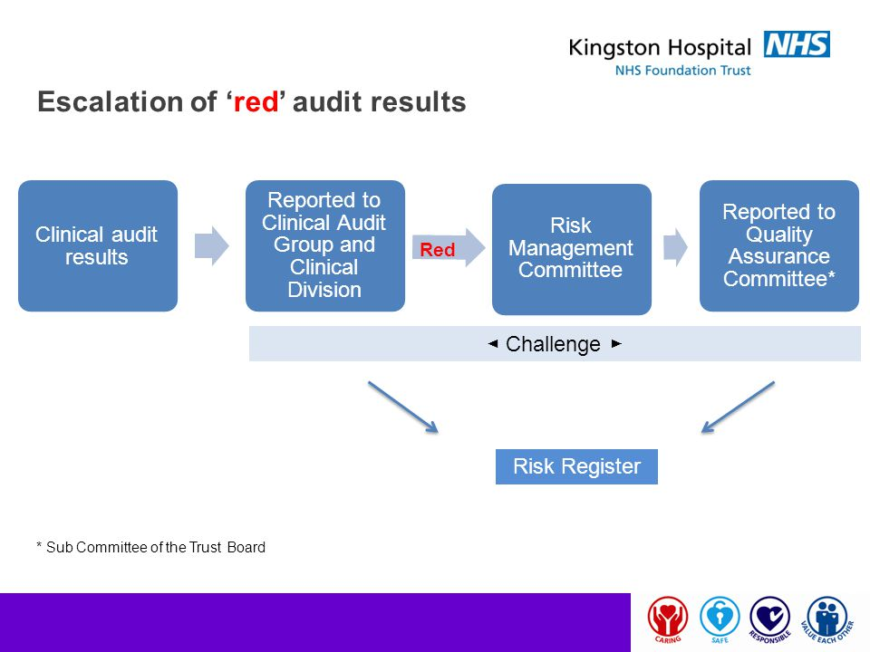 Escalation of 'red' audit results