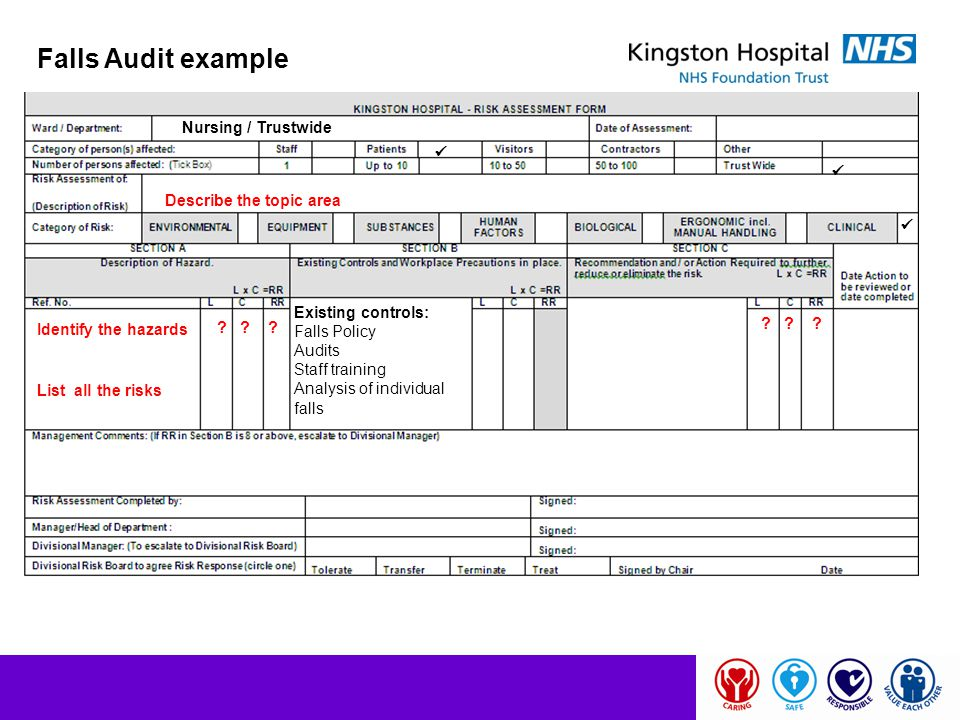 Falls Audit example Nursing / Trustwide   Describe the topic area 