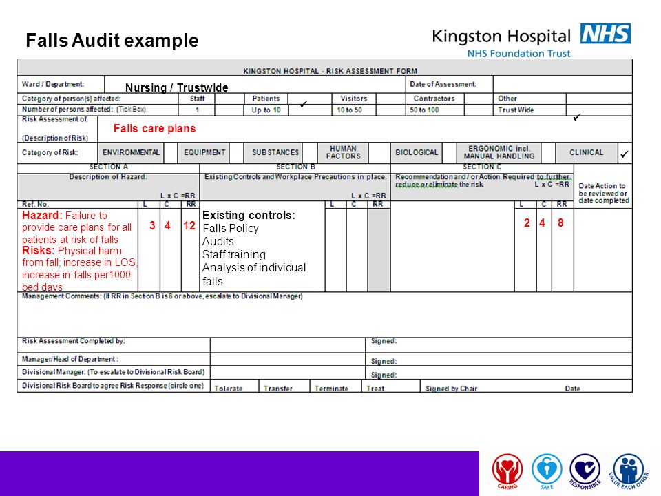Falls Audit example Nursing / Trustwide   Falls care plans 