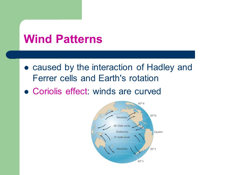 Wind Patterns caused by the interaction of Hadley and Ferrer cells and Earth s rotation.