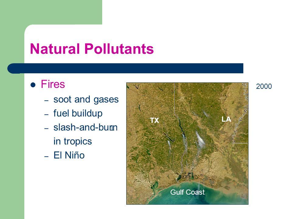 Natural Pollutants Fires soot and gases fuel buildup slash-and-burn