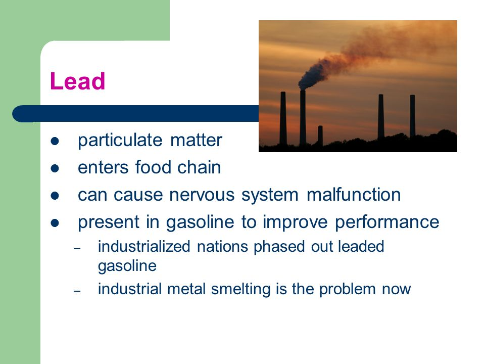 Lead particulate matter enters food chain