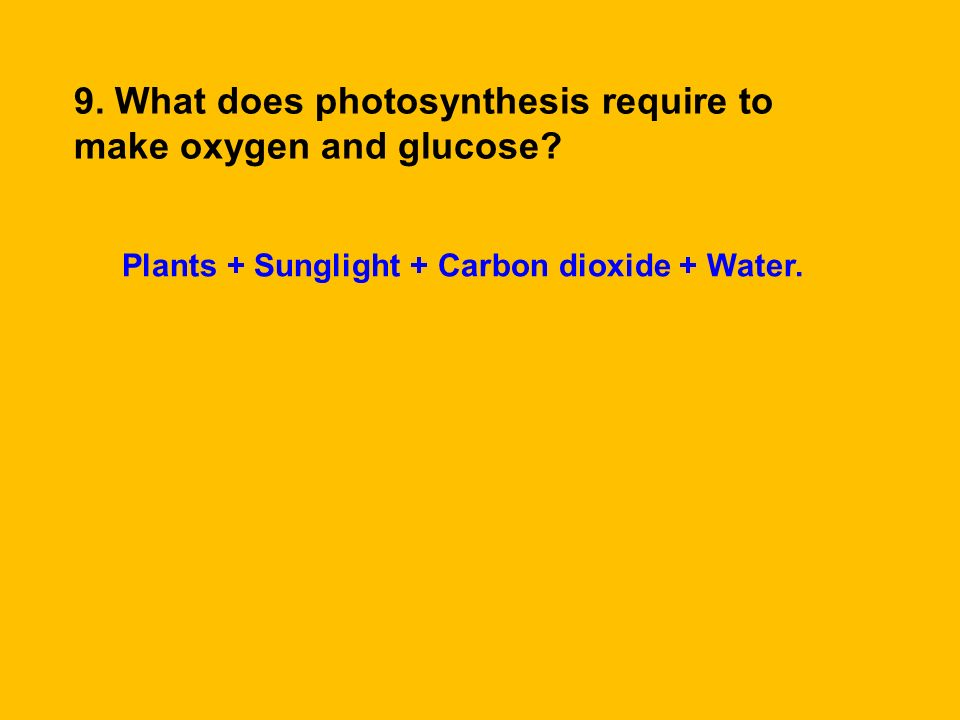 9. What does photosynthesis require to make oxygen and glucose