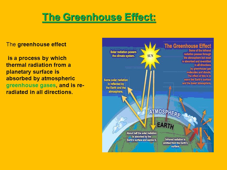 The Greenhouse Effect:
