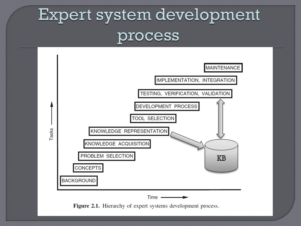 Expert system development process
