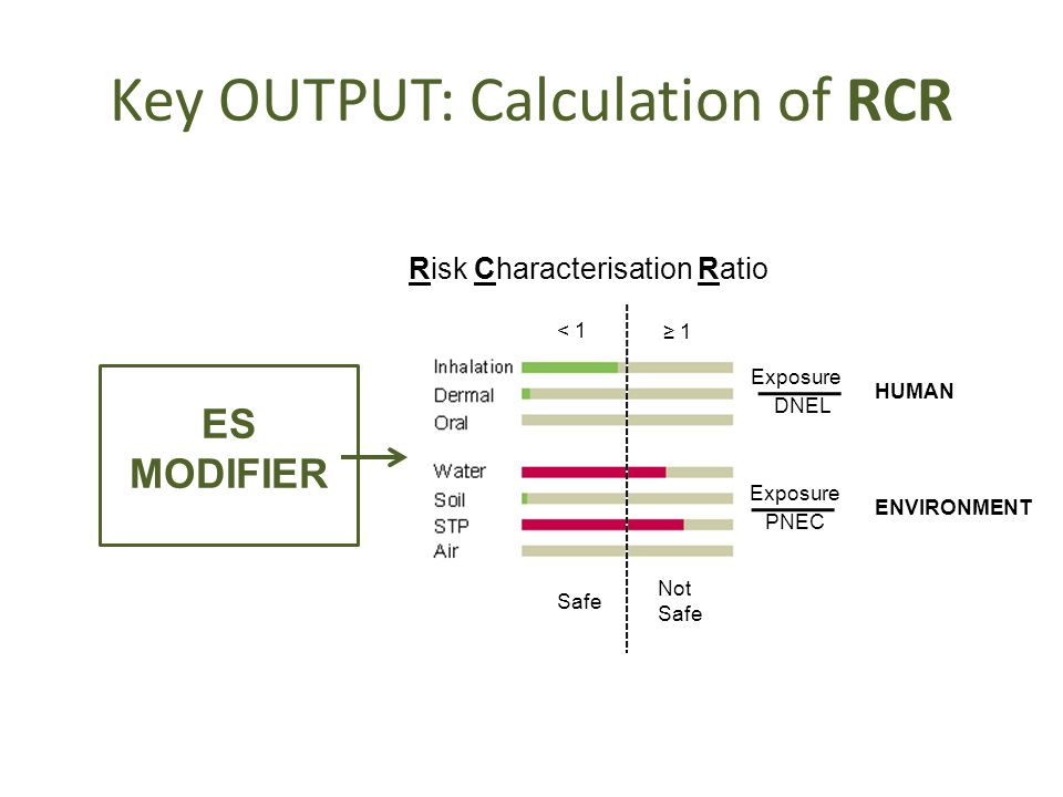 Key OUTPUT: Calculation of RCR