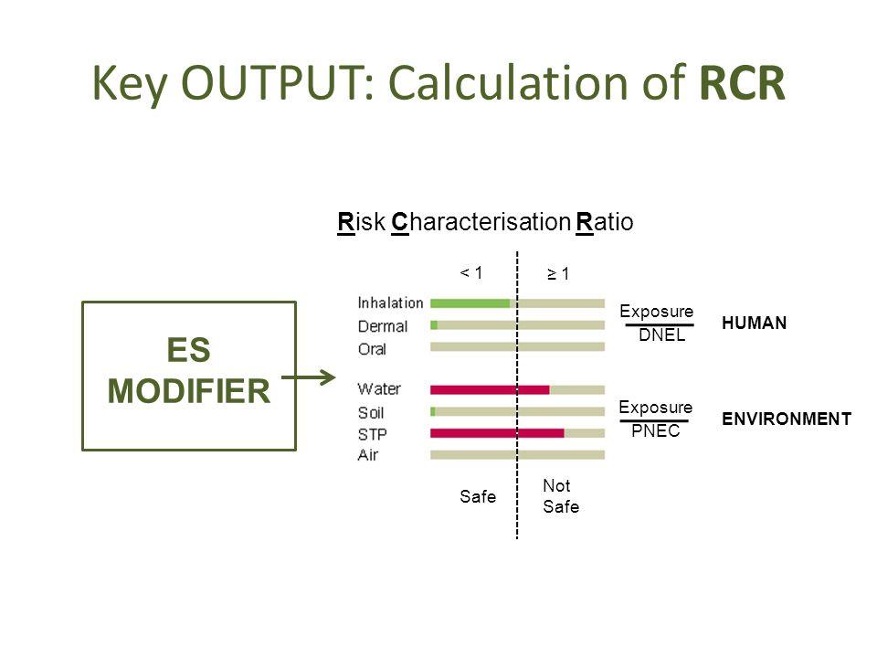 Key OUTPUT: Calculation of RCR