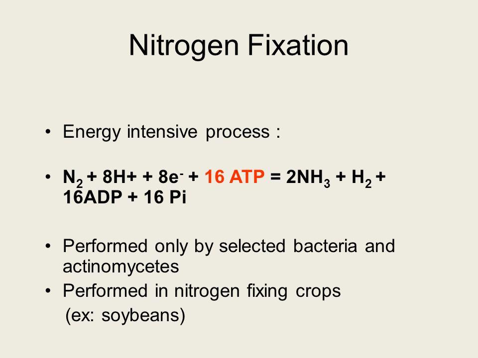 Nitrogen Fixation Energy intensive process :