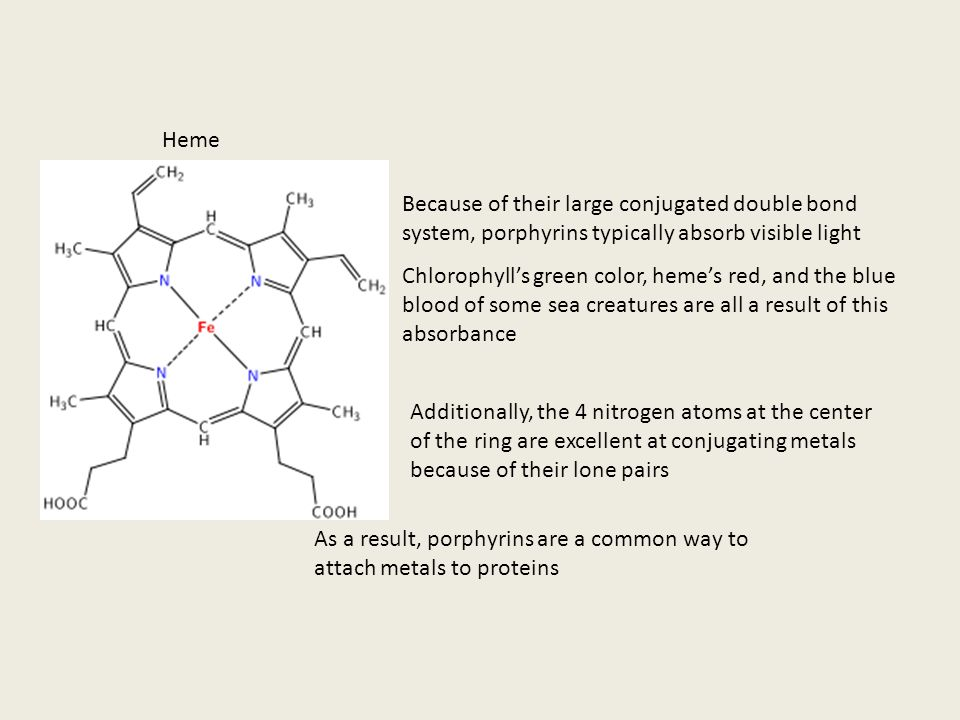 Heme Because of their large conjugated double bond system, porphyrins typically absorb visible light.