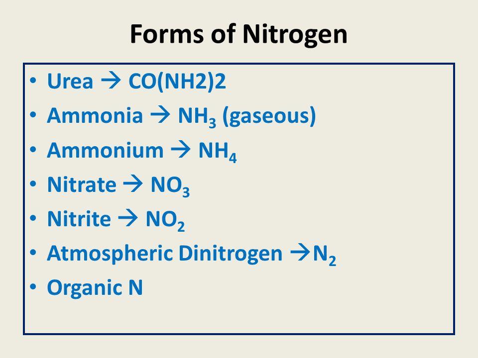 Forms of Nitrogen Urea  CO(NH2)2 Ammonia  NH3 (gaseous)