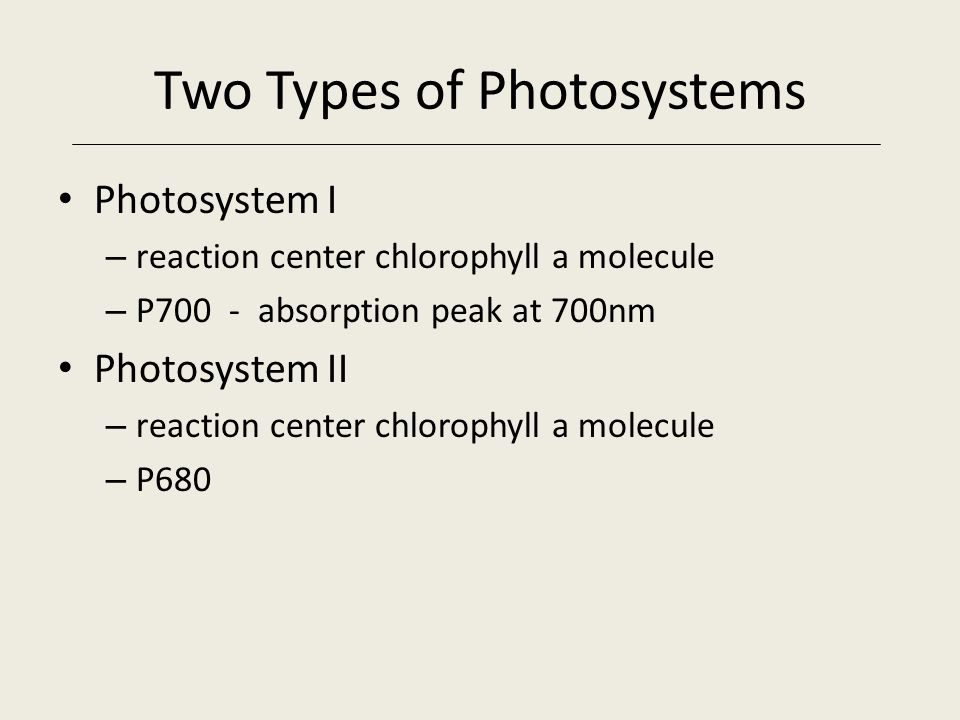 Two Types of Photosystems