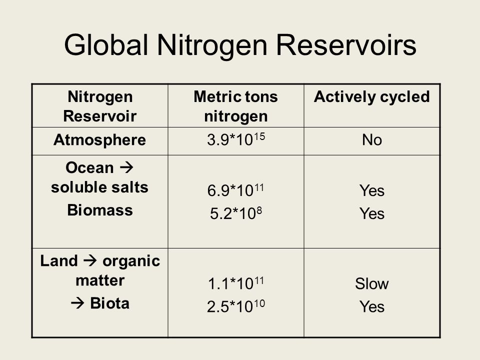 Global Nitrogen Reservoirs