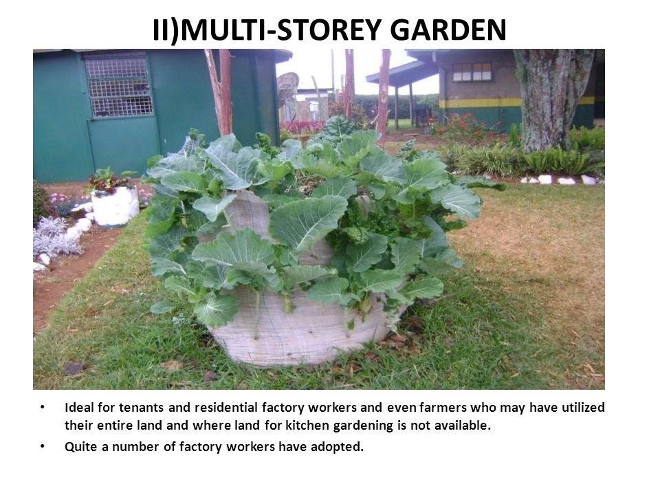 II)MULTI-STOREY GARDEN