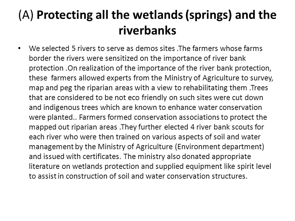 (A) Protecting all the wetlands (springs) and the riverbanks