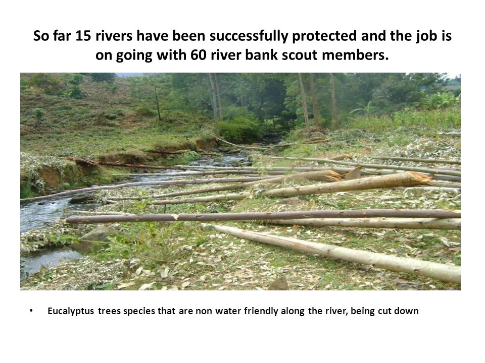So far 15 rivers have been successfully protected and the job is on going with 60 river bank scout members.
