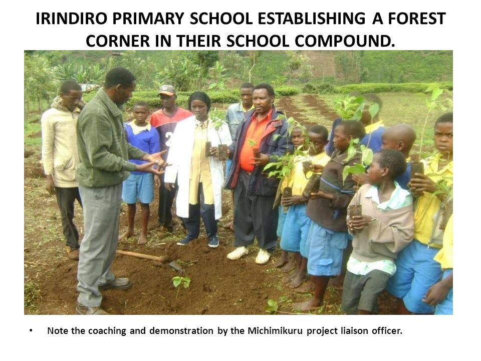 IRINDIRO PRIMARY SCHOOL ESTABLISHING A FOREST CORNER IN THEIR SCHOOL COMPOUND.