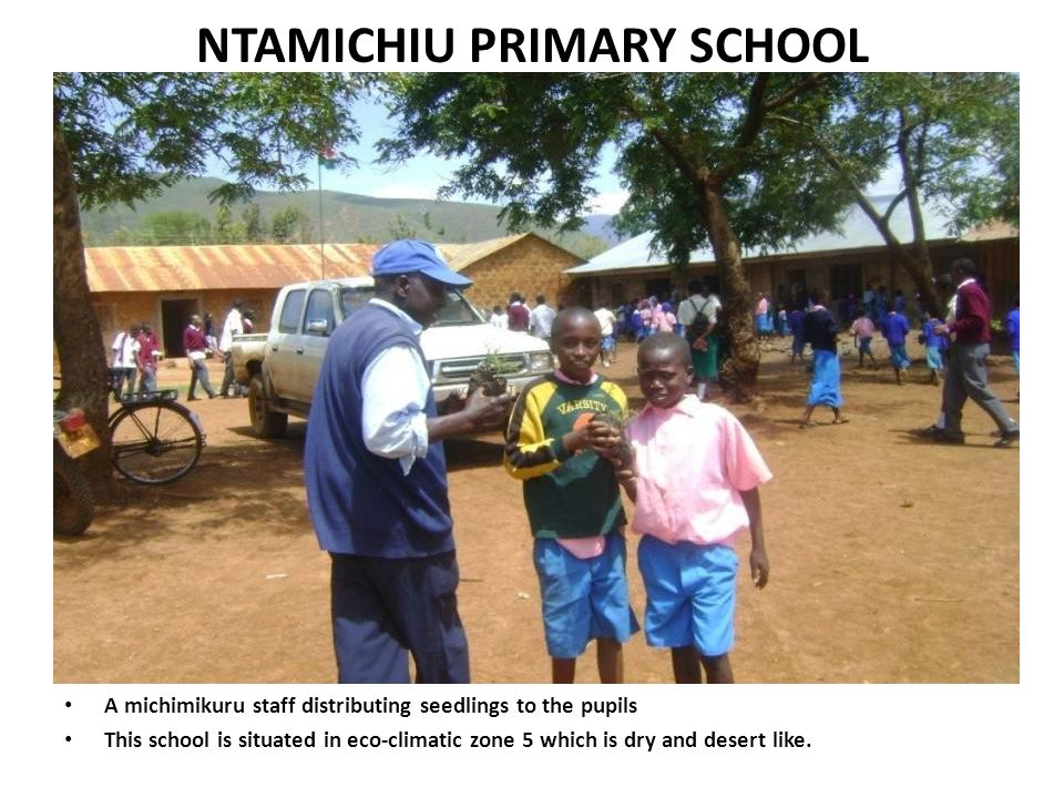 NTAMICHIU PRIMARY SCHOOL