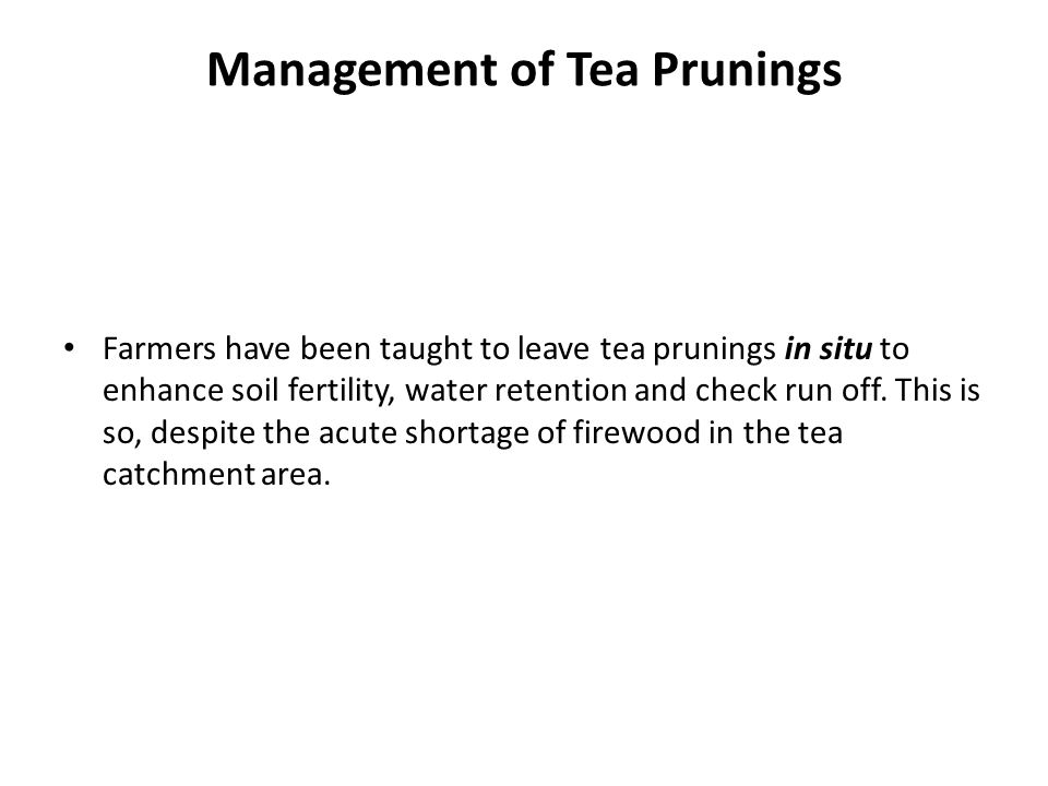 Management of Tea Prunings