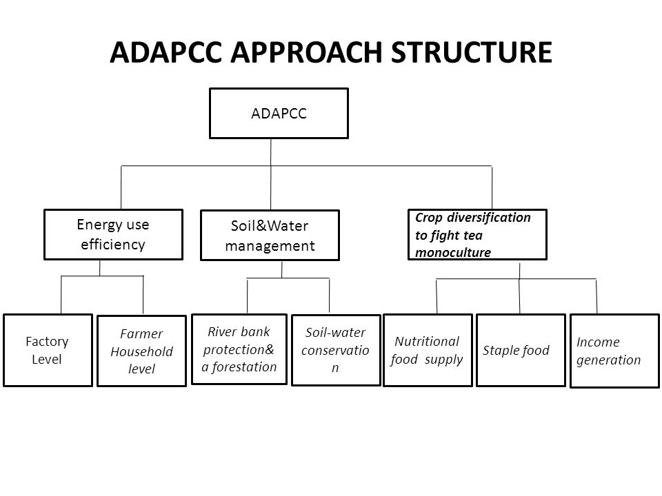 ADAPCC APPROACH STRUCTURE
