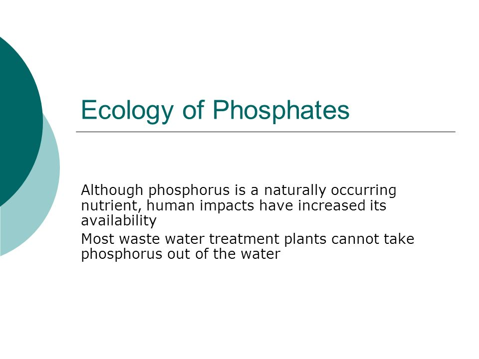 Ecology of Phosphates Although phosphorus is a naturally occurring nutrient, human impacts have increased its availability.