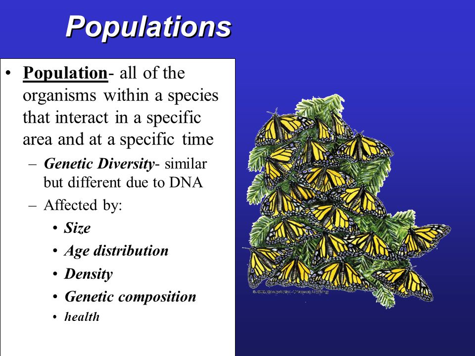 Populations Population- all of the organisms within a species that interact in a specific area and at a specific time.
