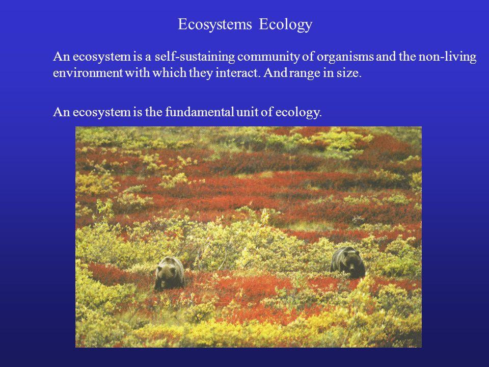 Ecosystems Ecology