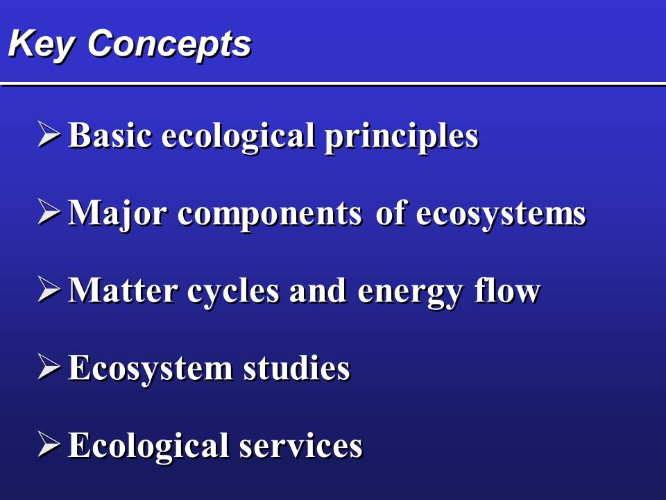 Key Concepts Basic ecological principles. Major components of ecosystems. Matter cycles and energy flow.
