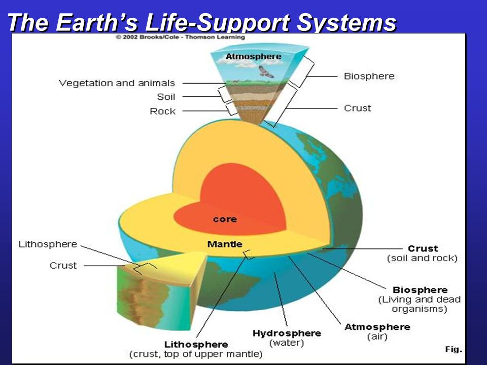 The Earth's Life-Support Systems