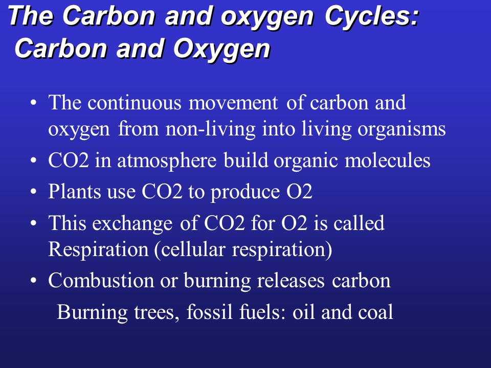 The Carbon and oxygen Cycles: Carbon and Oxygen