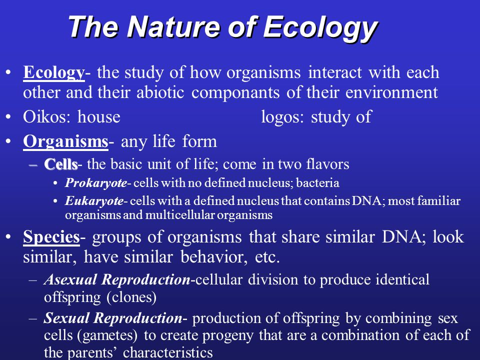 The Nature of Ecology Ecology- the study of how organisms interact with each other and their abiotic componants of their environment.