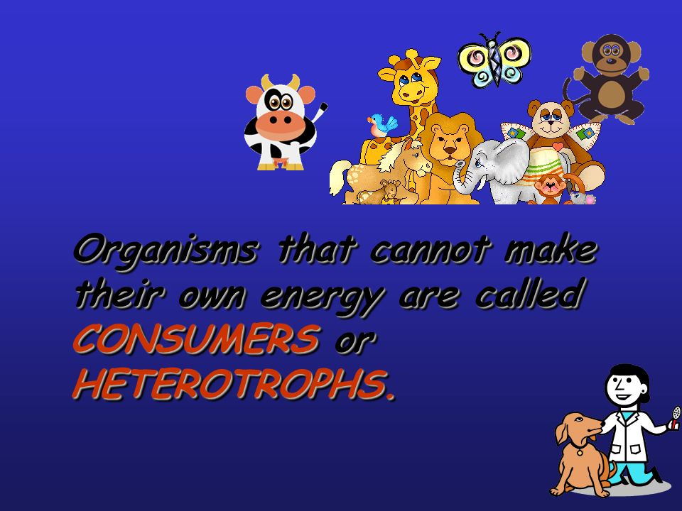 Organisms that cannot make their own energy are called CONSUMERS or HETEROTROPHS.