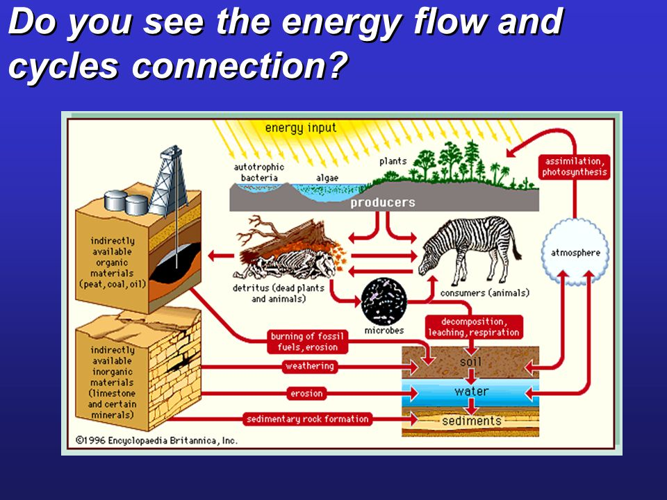 Do you see the energy flow and cycles connection