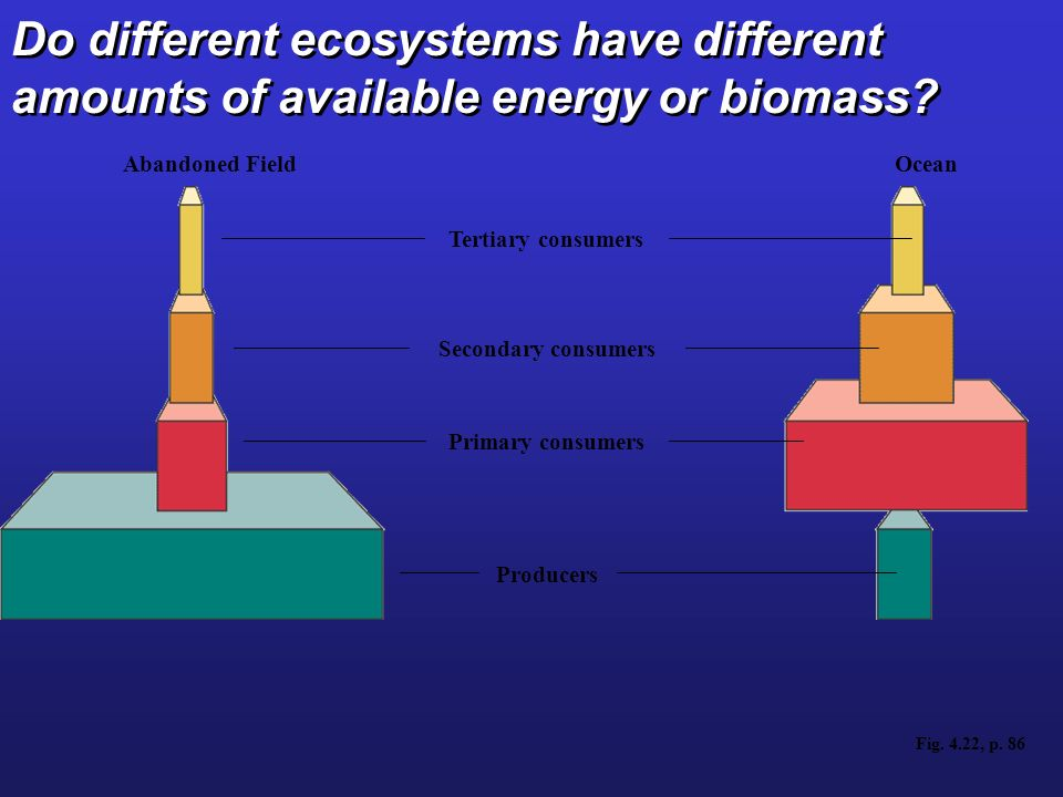 Do different ecosystems have different amounts of available energy or biomass