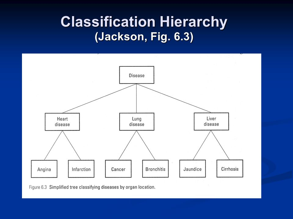 Classification Hierarchy (Jackson, Fig. 6.3)