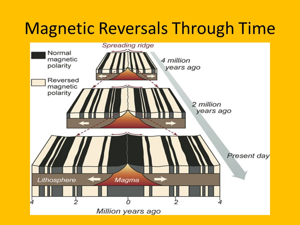 Magnetic Reversals Through Time