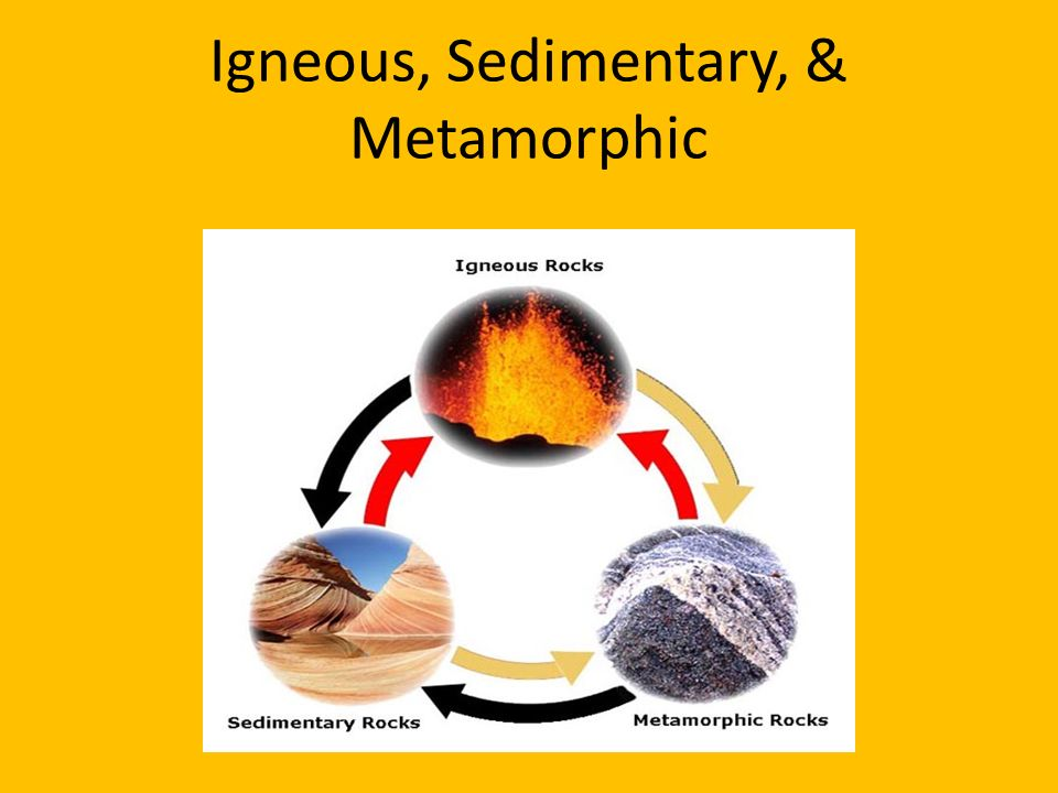 igneouse metamorphic sedimentary rocks Igneous rocks: examples and uses sedimentary rocks: examples and uses metamorphic rocks: rocks at cliffe castle museum previous next.