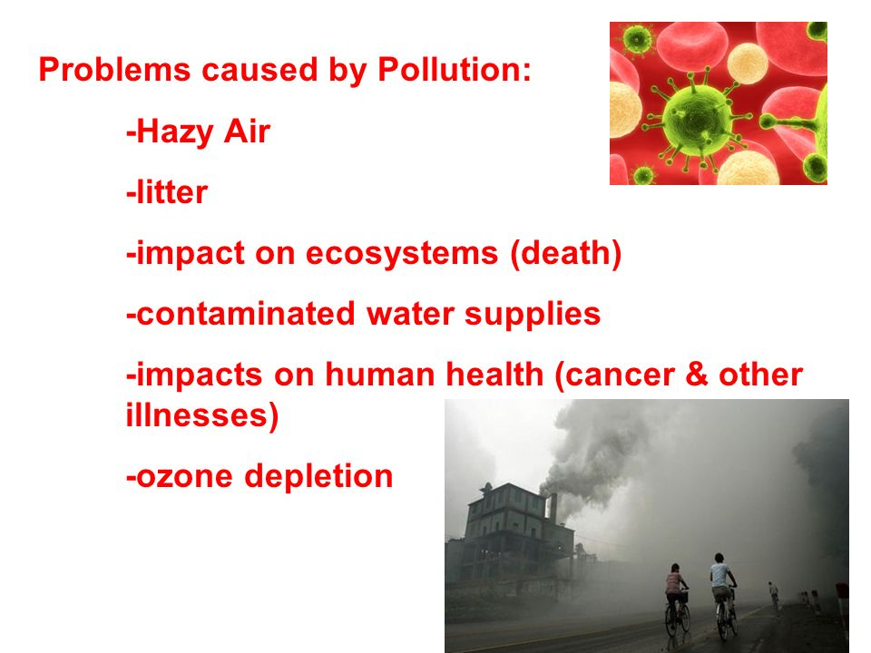 Problems caused by Pollution: