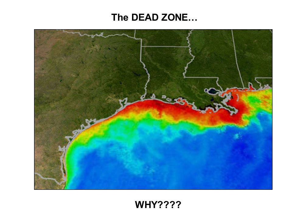 The DEAD ZONE… WHY