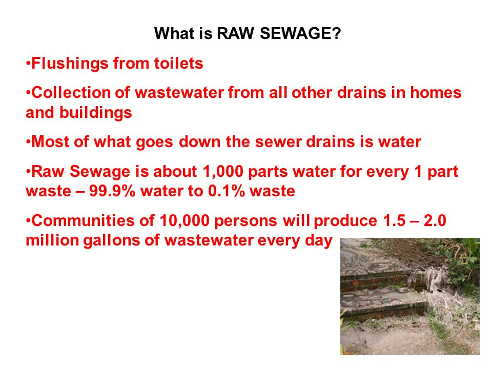 What is RAW SEWAGE Flushings from toilets. Collection of wastewater from all other drains in homes and buildings.