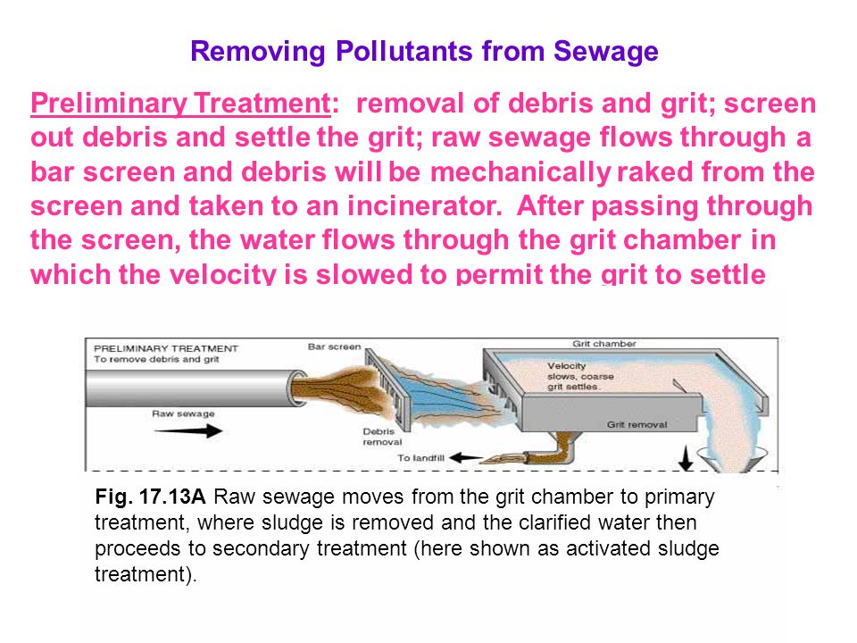Removing Pollutants from Sewage