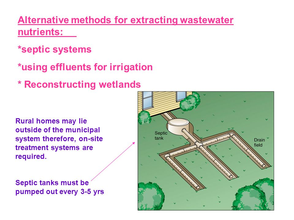 Alternative methods for extracting wastewater nutrients: