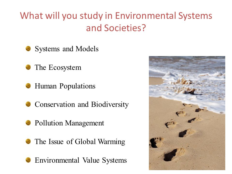 What will you study in Environmental Systems and Societies