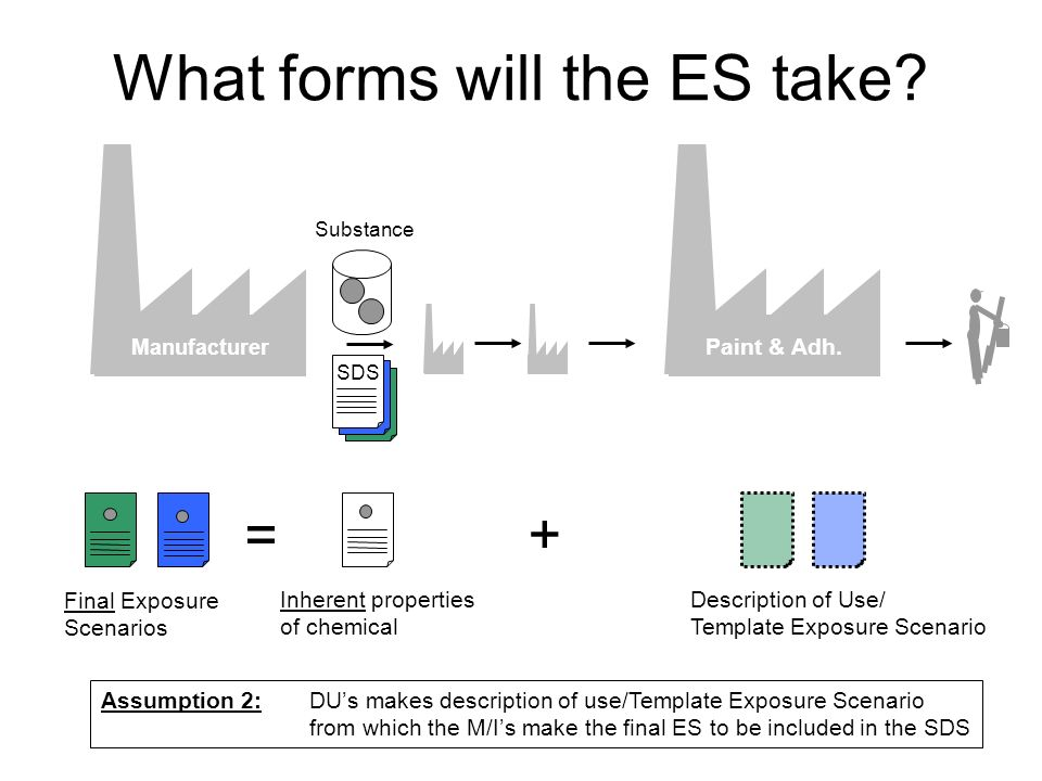 What forms will the ES take